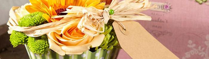 Wet Floral Foam: Bricks, Cones, Spheres, Cakes & Shapes
