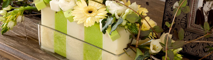 Oasis Floral Foam: Bricks, Blocks & Shapes