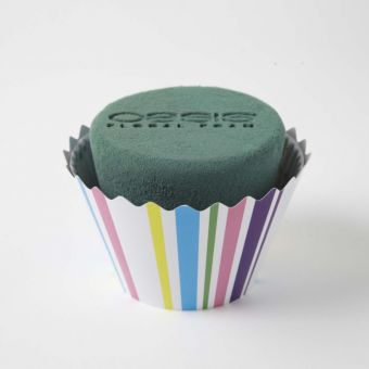 OASIS® Ideal Floral Foam Maxlife Cupcakes - Stripe - 12cm (Pack of 6)