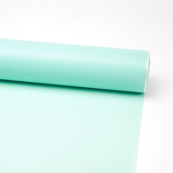 Frosted Film - Duck Egg Blue
