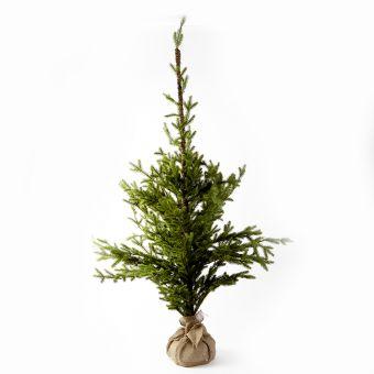 Alpine Tree - 70cm x 70cm x 130cm