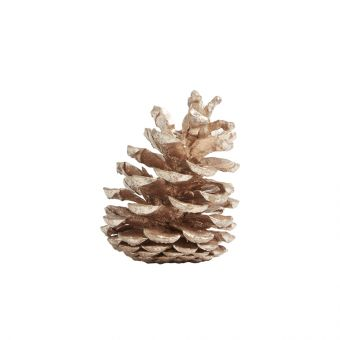 Painted Loose Pine Cones Rose Gold (Pack of 25)