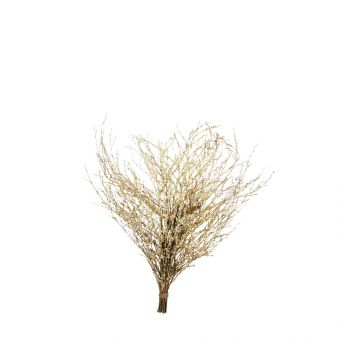 Winter Branches Glittered - Gold - 85cm