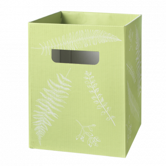 Ferns Porto Boxes (Pack of 10)