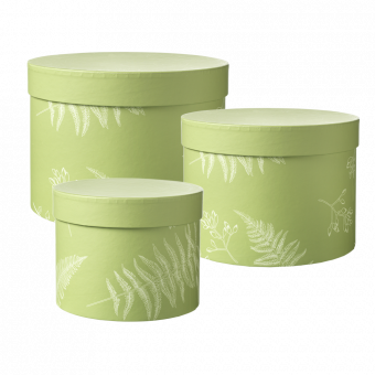 Round Floral Ferns Lined Hat Box (Set of 3)
