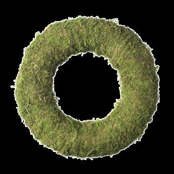 Wetlands Moss Wreath Ring - 25cm