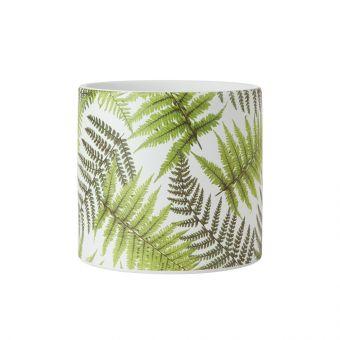 Ferns Cylinder Ceramic Pot 16cm