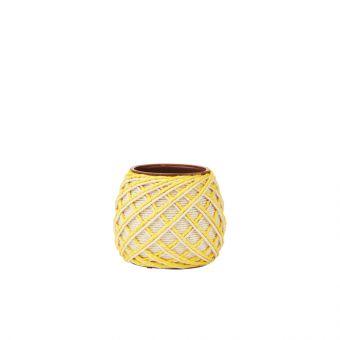 Sisal Yellow Eden Pot 10cm