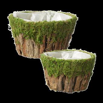 Wetlands Bark Bowls (Set of 2)