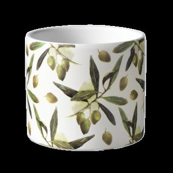 Olive Branch Pot - 10.5cm