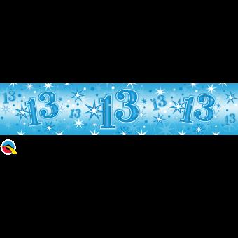 Blue Foil 13 Banner