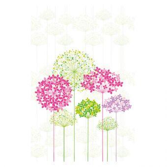 Multi-Coloured Hydrangeas - Large (Pack of 25)