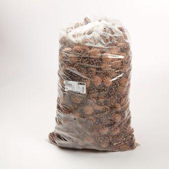 Pine Cones Austriaca (10kg Pack)