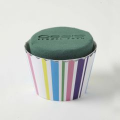 OASIS® Ideal Floral Foam Maxlife Cupcakes - Bold Stripe - 8cm (Pack of 6)