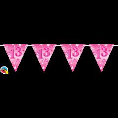 Pink Foil Birthday Flag Bunting